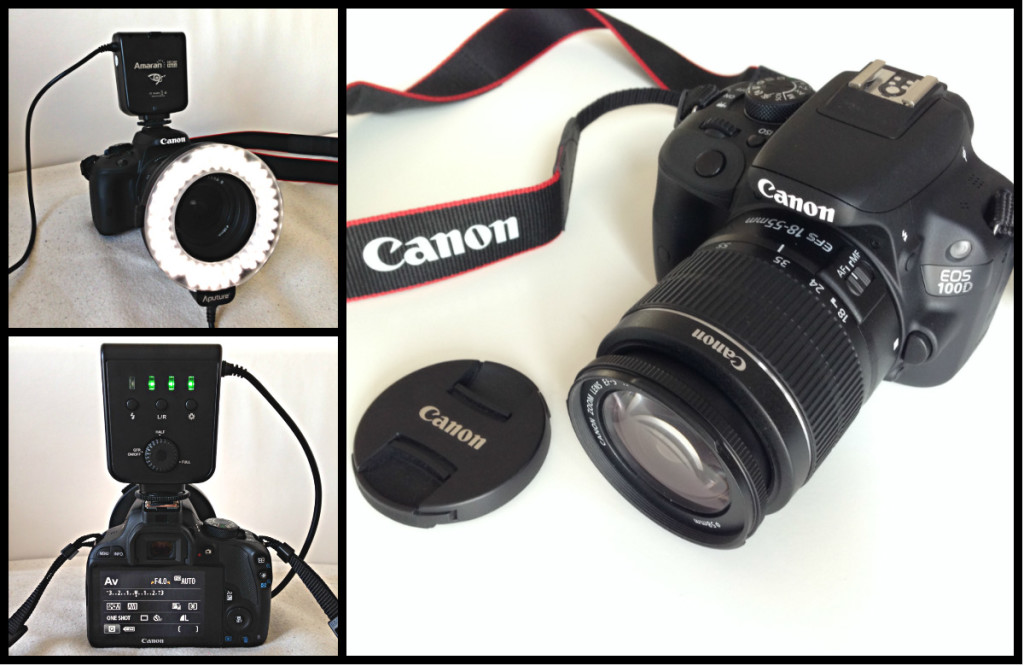 Canon EOS 100D + Lichtring